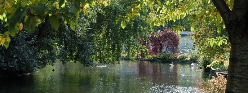 2005-10-09_Nikon_D50__dsc_0070_crop_small.jpg