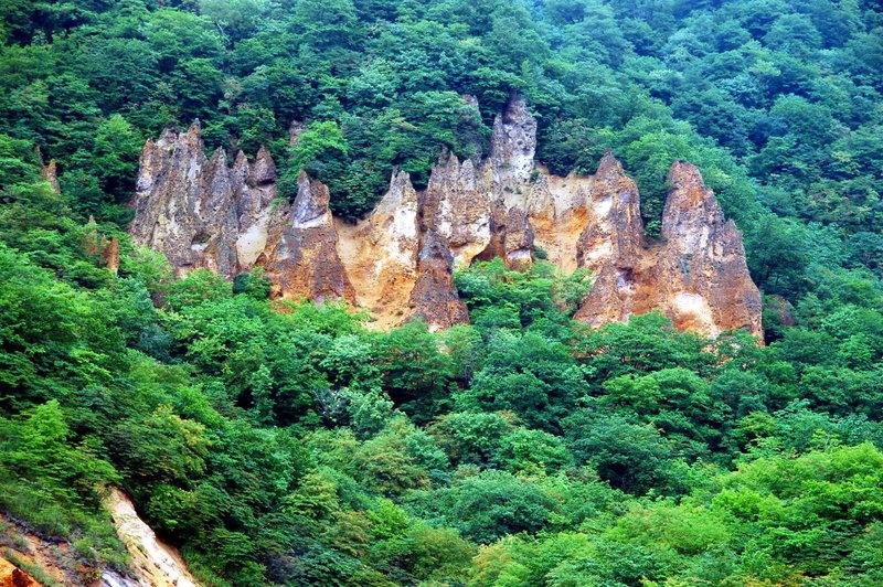 2008-09-23_Jigokudani_14_small.jpg